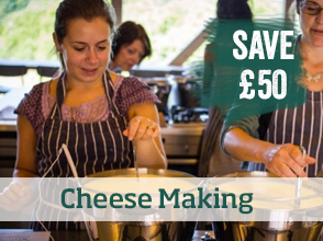 Cheese making course >