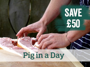 Pig in a day course >