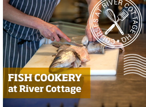 Learn fish skills at River Cottage HQ >