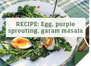 RECIPE: Egg, purple sprouting, garam masala >