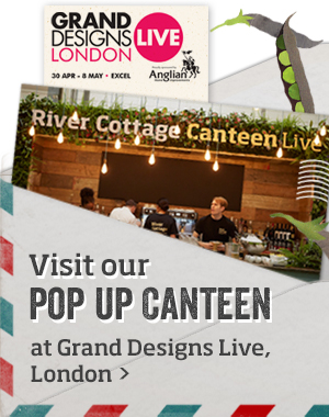 Pop up Canteen >