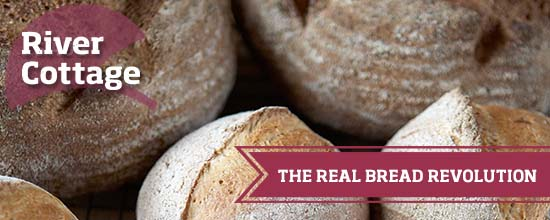 Join the real bread revolution >