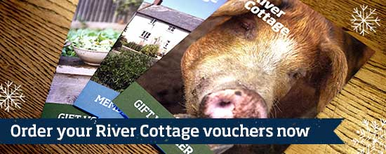 River Cottage vouchers >