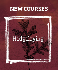 Hedgelaying >