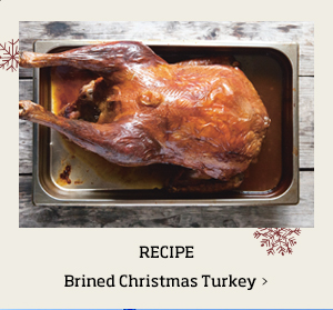 Brined Christmas Turkey >