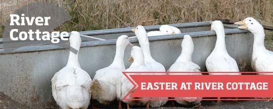 Easter at River Cottage >