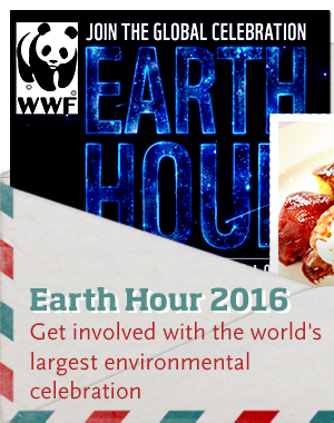 Get involved with Earth Hour >