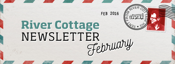 Welcome to our February newsletter