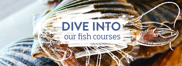 Fish Courses at River Cottage >