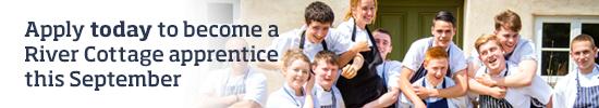 Apprenticeship Scheme >