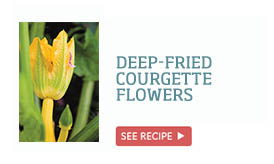 Deep-fried courgette flowers >