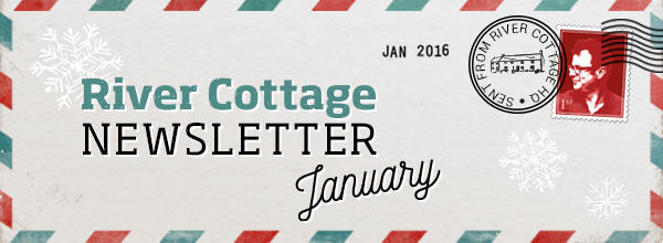 Welcome to our January newsletter
