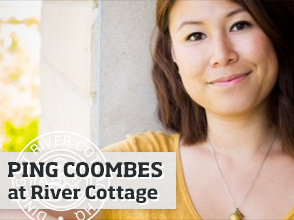 Ping Coombes >
