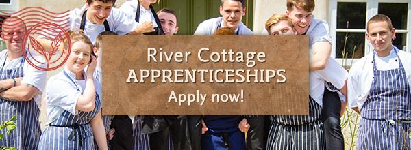 River Cottage apprentices >
