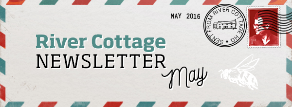 Welcome to our May newsletter