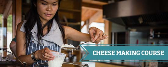 Cheese Making at River Cottage >