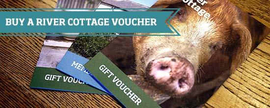River Cottage vouchers >