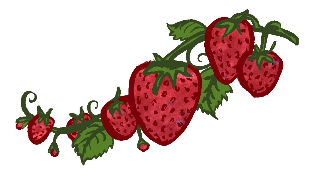 Strawberry summer!