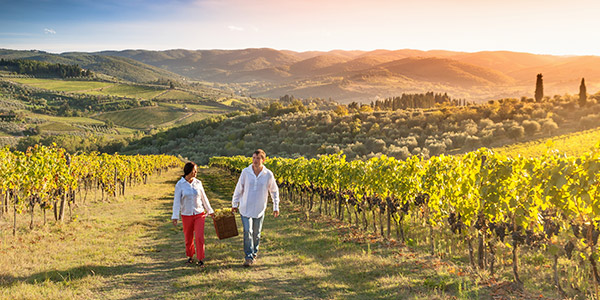 Couple walking through vineyard
